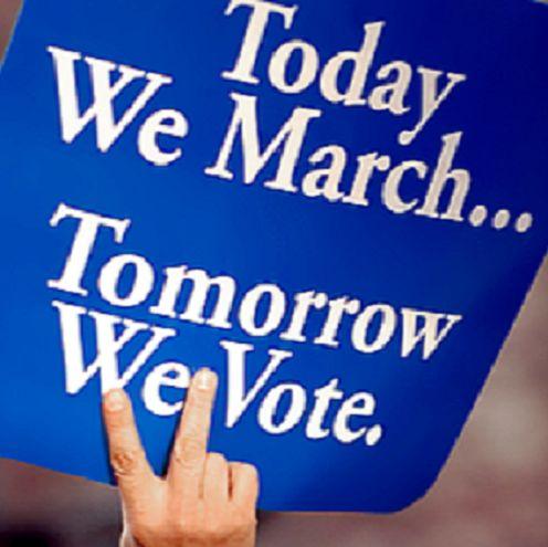 Two South Florida State Senate Races - SaintPetersBlog