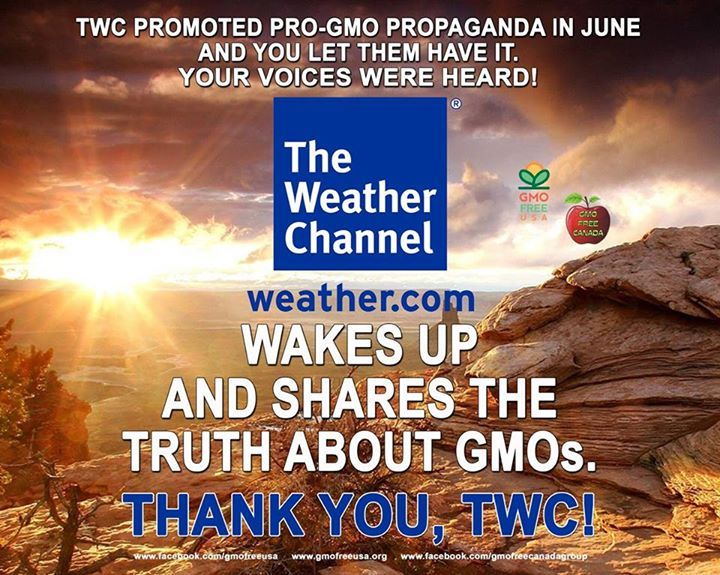 In June, The Weather Channel promoted an article that was pro-GMO propaganda and we all told them that it was NOT OK. Our voices were heard. Check out this interview on GMOs with Jeremy Gruber, President of Council For Responsible Genetics. http://www.weather.com/video/gmo-secrets-revealed-52616  #TWC #TheWeatherChannel #GMO #GMOTruths #TheGMODeception #labelgmos #needtoknowgmo #freedom2chooz #BoycottGMOs #JeremyGruber #CouncilForResponsibleGenetics #CRG #GMOFreeCanada #GMOFreeUSA