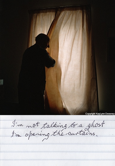"""I'm not talking to a ghost I'm opening the curtains.""   Book: The Day-to-Day Life of Albert Hastings"