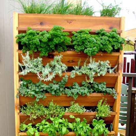 DIY Vertical Garden Systems | vertical gardening gronomics