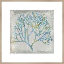 Watercolor Coral II