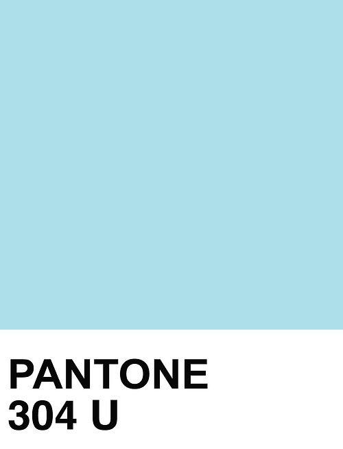 Pantone 304 pantone pinterest posts and pantone for Where to buy pantone paint