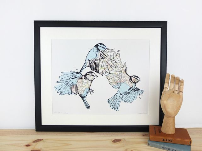 Blue tits in motion by Jenny mccabe