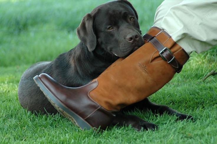 Lederen herenlaars Challenger  Heren outdoorlaars Challenger - brandy of choco leather van Magellan & Mulloy, met één verstelbare riem voor de kuiten met soufflé. Ook geschikt voor mannen met een hoge wreef en/of bredere voeten.