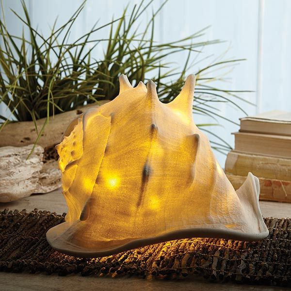 Can you hear the ocean? Oversized conch shell is filled with a chain of 40 LED lights. Indoors or out, it will cast a warm glow and inspire dreams of the sea. D