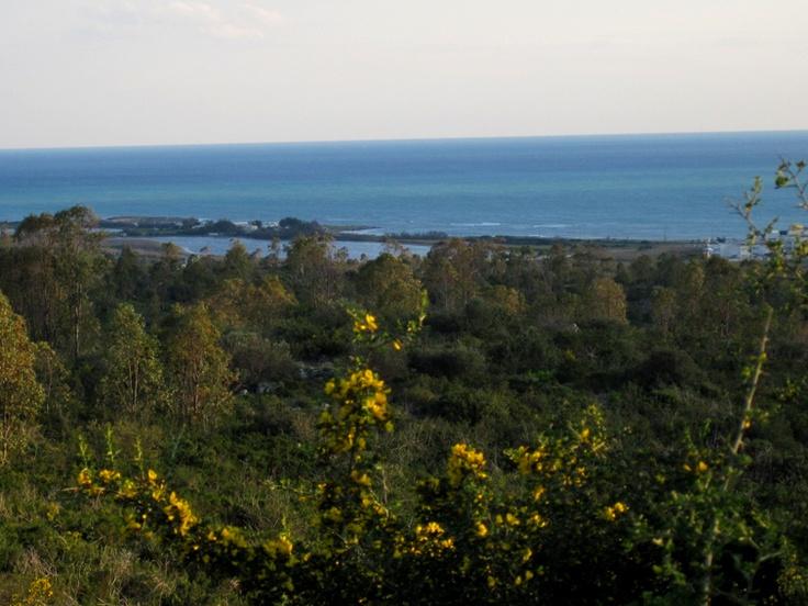 Landscape in Ugento.