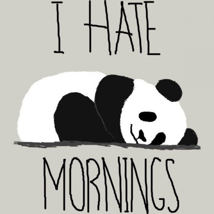 "I hate mornings Panda. Who wants to get up early in the morning when you're so comfy under your warm blanket? Did you know that pandas sleep up to 10 hours a day! These ""naps"" last about 2-4 hours at a time. However, during the summer months, their naps can last up to 6 hours long. =) Here's another fun fact; pandas go poop while they sleep. Yep, this is true. This is a key indicator of how long a panda may have slept during that sitting...> Read & learn more at shirtlessbum.com"