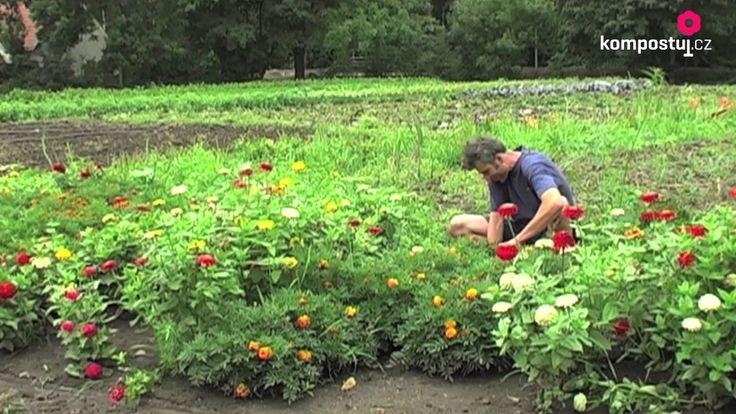 Ekologické poľnohospodárstvo / Ekologické zemedelství.