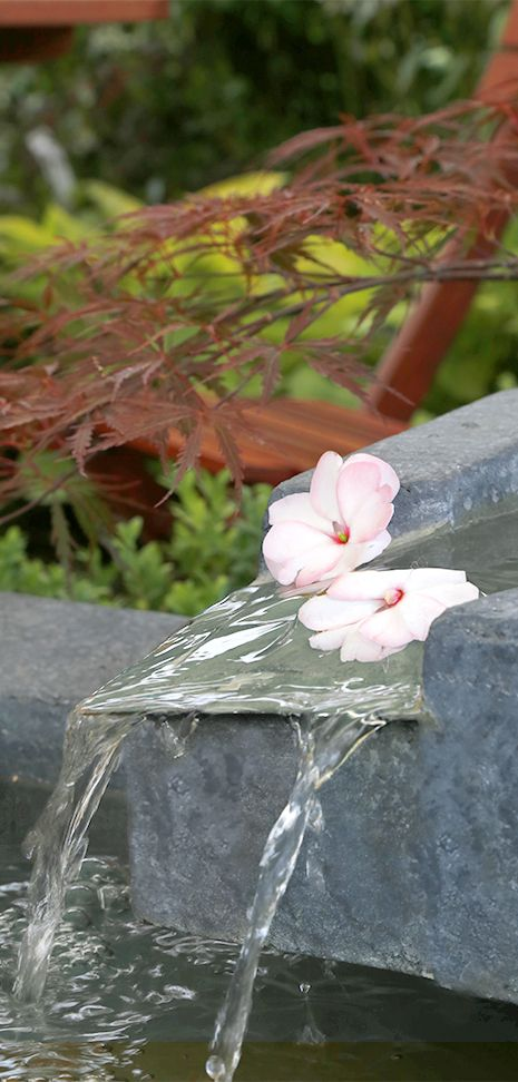 """""""The temple bell is silent, but the sound will continue to leave from #flowers."""" #Agricola #OrientalScent #Haiku"""