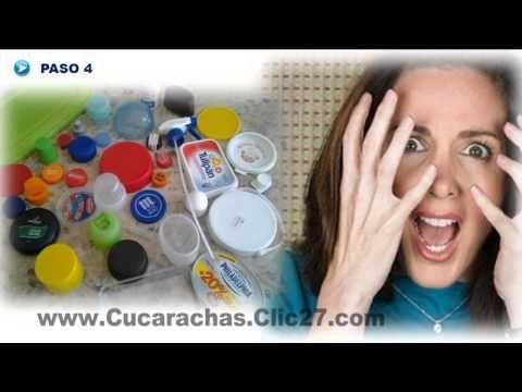 Como Matar Cucarachas Con Acido Borico | Acido Borico Para Matar Cucarachas