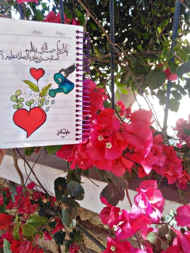 علياء كامل Aliaa Kamel Book Cover Art Cover