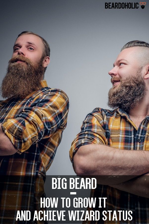 Big Beard – How To Grow It and Achieve Wizard Status From beardoholic.com