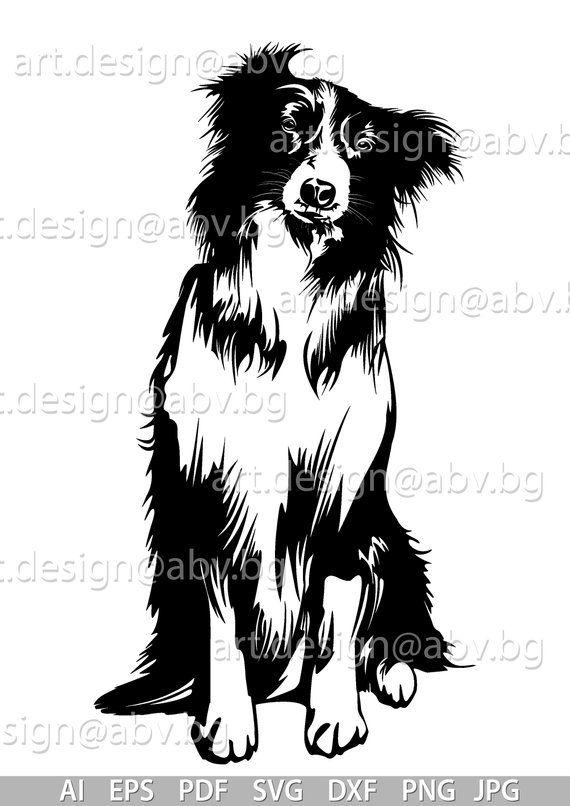 Vector Dog Border Collie Ai Png Pdf Eps Svg Dxf Jpg Etsy Animal Stencil Art Border Collie Dog Animal Stencil