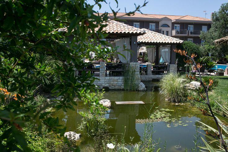 The pond.