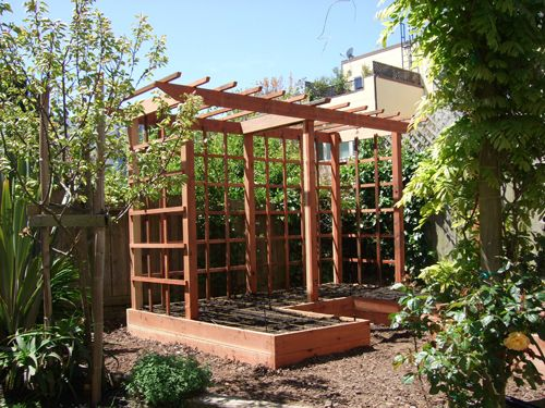 1000 images about edible garden on pinterest gardens for Vegetable garden pergola