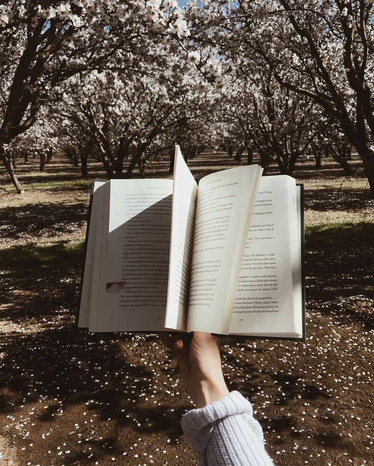 как интересно фотографировать книги