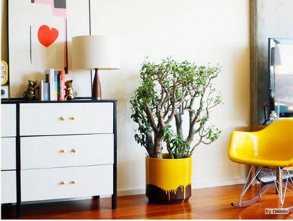 Salpicaduras de pintura en objetos decorativos