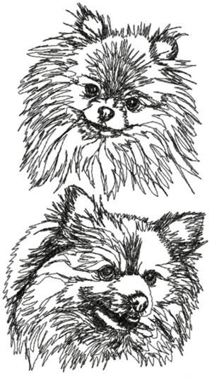 Advanced Embroidery Designs - Pomeranian Set
