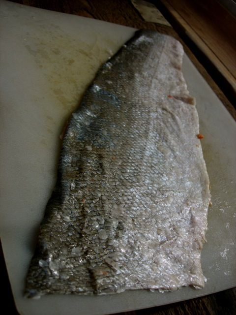 Bark tanned salmon skin      I've been experimenting with bark tanning salmon skins for the past couple of months now. The main trick is t...