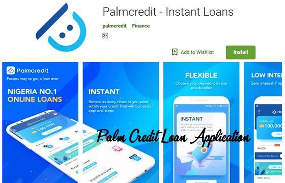 Palm Credit Loan Application Application Process For A Palm Credit Loan No Credit Loans Loan Application Loan