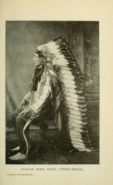 Featuring biographies of Powhatan, the father of Pocahontas, Cofachiqui, Chief Joseph and Geronimo, Lives of Famous Indian Chiefs includes over a dozen Native American stories and anecdotes.
