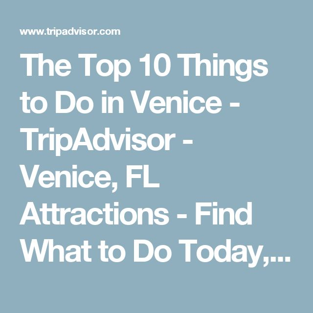 The Top 10 Things to Do in Venice - TripAdvisor - Venice, FL Attractions - Find What to Do Today, This Weekend, or in January