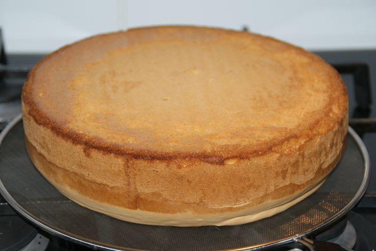 Wil je zelf biscuitdeeg maken voor een taartbodem? Volg dan dit makkelijke biscuitdeeg recept en maak snel zelf een taartbodem. Geen zin om het zelf te maken? Je kunt debiscuitmix ook kant-en-klaar kopenin onze webshop. Biscuitdeeg: ingrediënten Voor een taartvorm van 24-26 cm doorsnede: 5 eieren 150 gram suiker 150 gram bloem Een beetje zout …