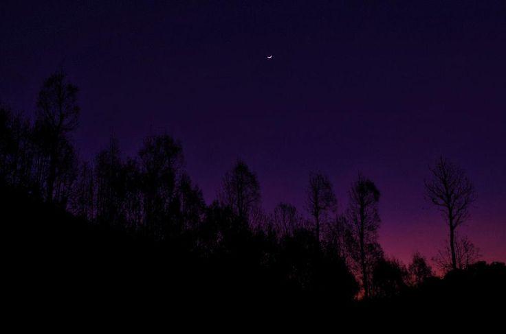 half moon by arthamade