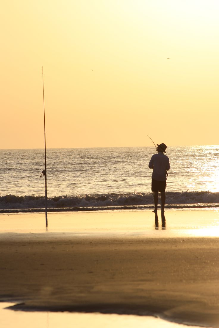 63 best fishing in naples florida images on pinterest for Surf fishing florida