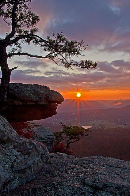 A eagle's sunrise.... Near Berea kentucky