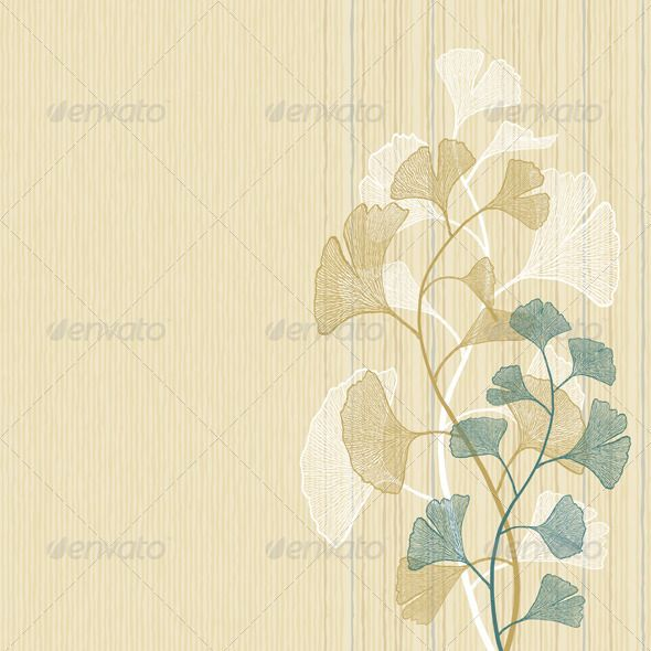 P-Ginkgo-background.jpg 590×590 pixels
