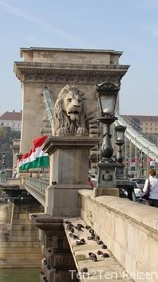 Ten2Ten Reizen is een jong bedrijf. In 2010 zijn wij gestart met het organiseren van vakanties naar Hongarije. De focus ligt op Hongarije. Mooi vakantieland met een rijke historie, ongerepte natuur en een zeer gastvrije bevolking. Voor een inspirerende rondreis, spectaculaire groepsreis of leerzame studiereis bent u bij Ten2Ten Reizen aan het juiste adres. Heeft u specifieke wensen voor de invulling van uw reis? Wij inventariseren graag uw persoonlijke wensen, met een advies op maat.