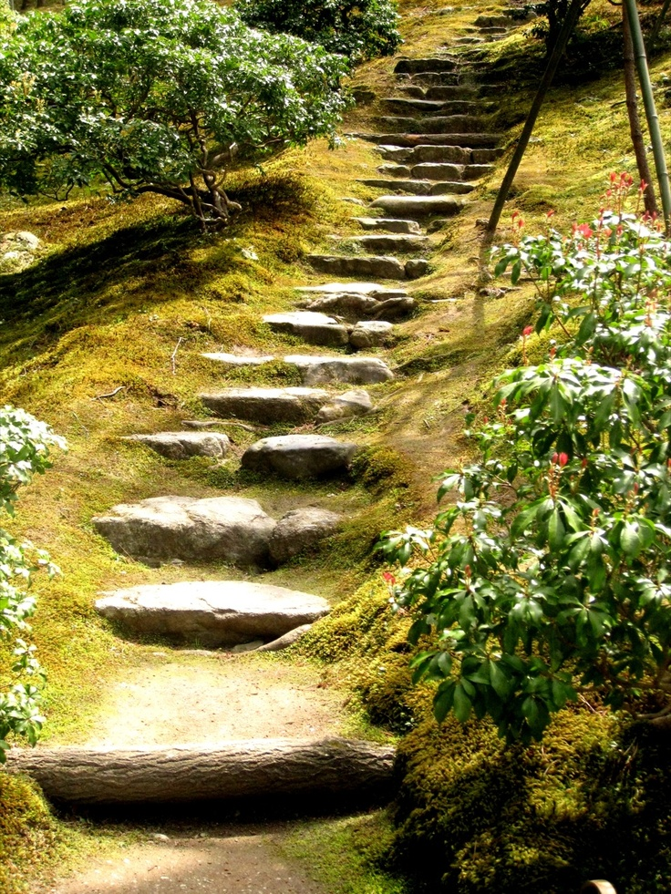 1000 images about steps for backyard hill on pinterest lighting