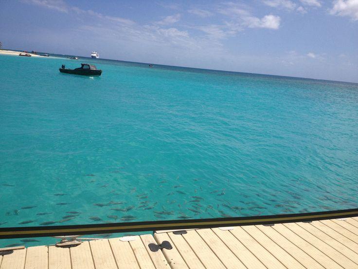 Mystery Island, Vanuatu - the tender trips are fun!