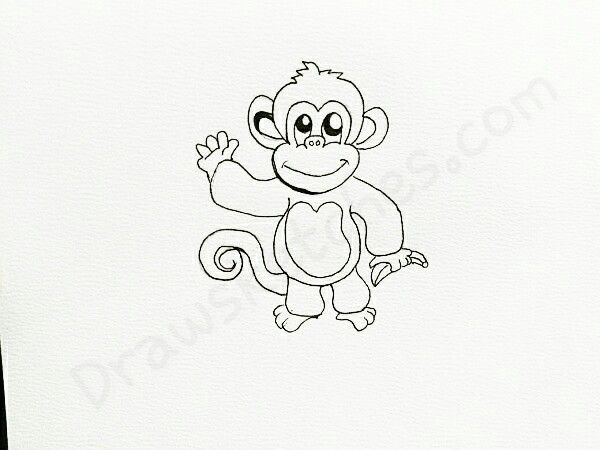 how to draw a cute monkey easy