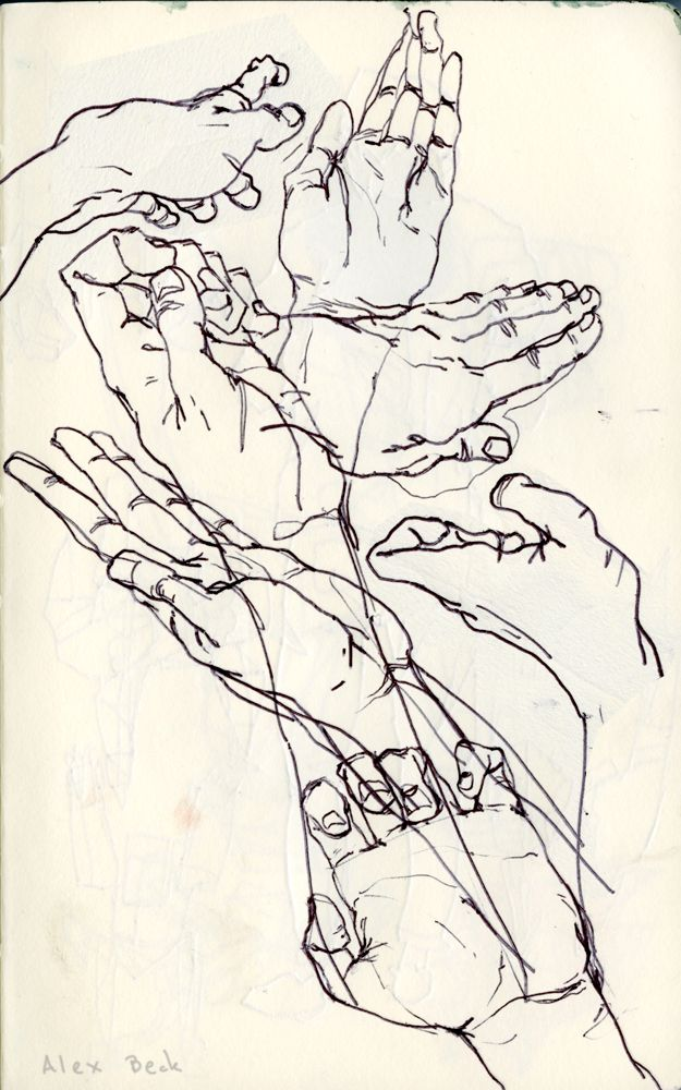 Line Drawing Of Hand : Best how to draw palm hand shoulder images on