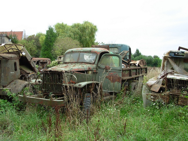 Abandoned Military Trucks, France by roger.w800, via Flickr