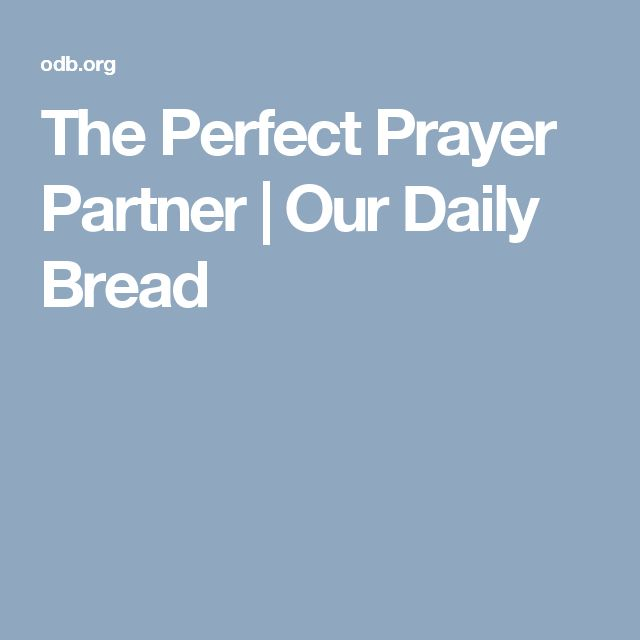The Perfect Prayer Partner   Our Daily Bread