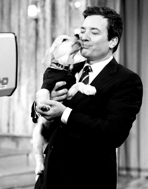 Jimmy Fallon with a puppy - adorbs plus the puppy has a sweater!!!! Puppy Sweaters!!!!!!!!!