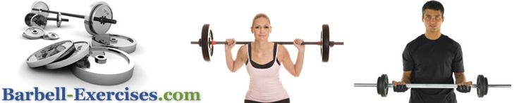 List of excercises to workout every part of your body, using dumbells and bars.