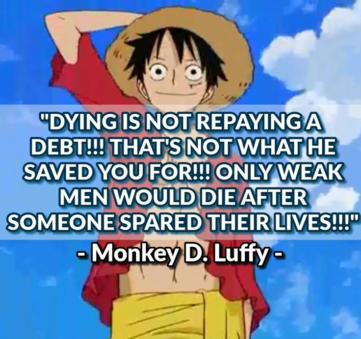 One Piece Quotes 20 Best Anime Images On Pinterest  One Piece Quotes Manga Anime .