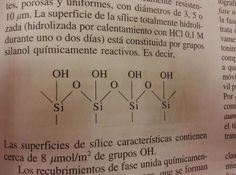 The chemical composition of a Latina girl's orgasm
