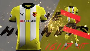 Image result for watford fc