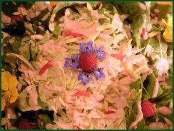 Raw Food Recipe Shaved Fennel Salad with Rasberry Dressing