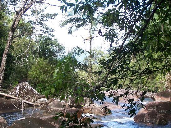 Eungella national park - close to whitsundays