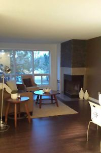 A Must See renovated 2-bedroom suite!  Close to U.H. and UWO! London Ontario image 9