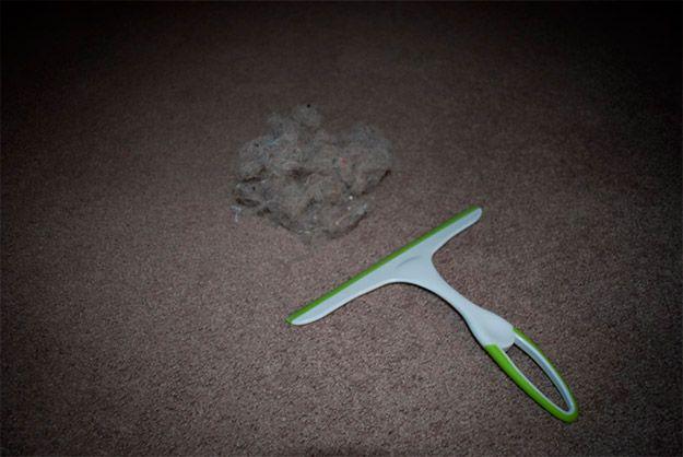 Quer remover pelos de cães e gatos facilmente dos tapetes? Experimente utilizar um rodo de pia. Puxa que é uma beleza.