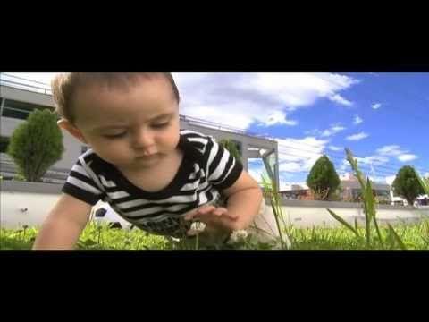 John Bowlby - Teoría del apego - YouTube