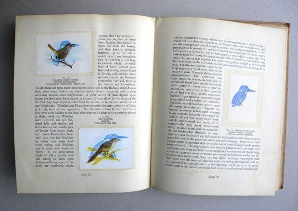 Hans Waanders: Our South African Birds, 1994