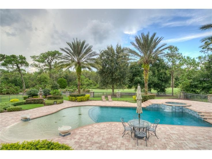 Is there anything more luxurious than your own private pool surrounded by towering palm trees? This Tampa backyard is truly an oasis!